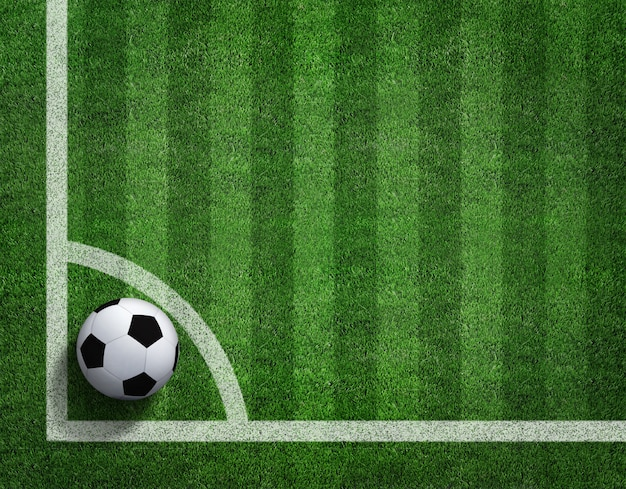 3d rendering of soccer ball with line on soccer field. Premium Photo