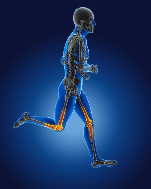 3d running medical man with skeleton knees highlighted Free Photo