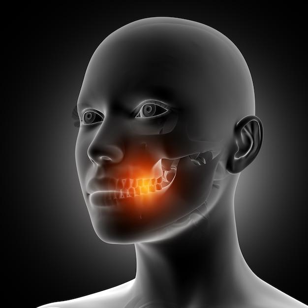 強調表示された歯を持つ3d女性の姿 無料写真