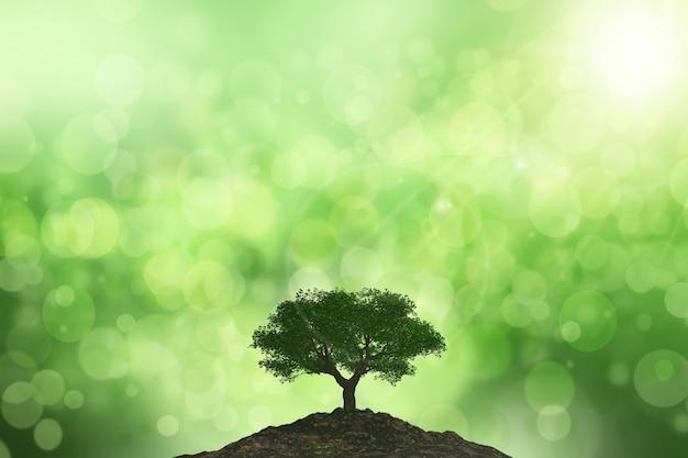 3d фон солнца на дерево на фоне боке Бесплатные Фотографии