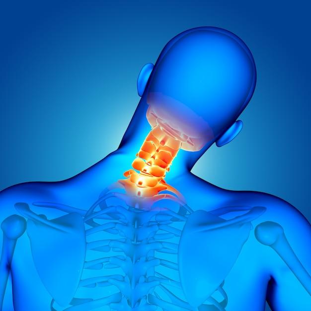 首の骨が強調された3dの医療男性像 無料写真