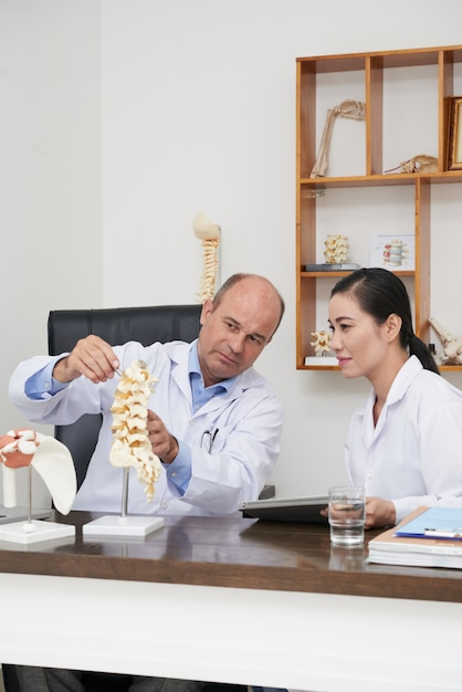 3dモデルを使用して脊椎構造をインターンに説明する理学療法士 無料写真