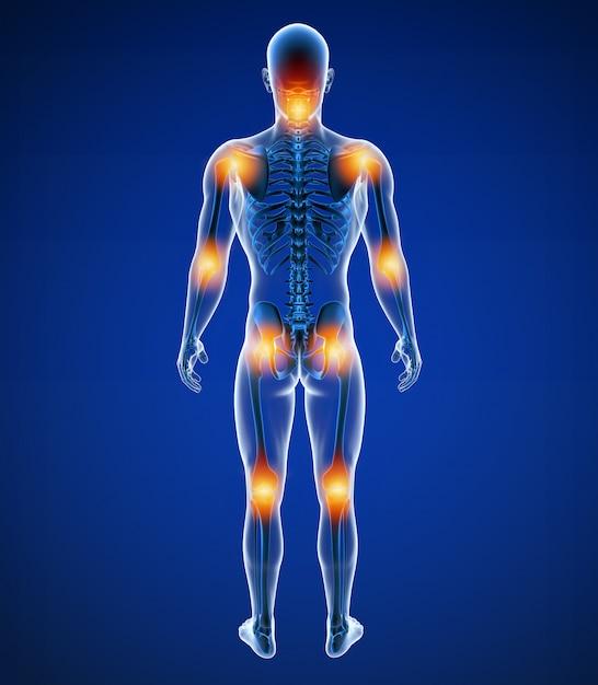 3d иллюстрация передней мужской боли в суставах Premium Фотографии