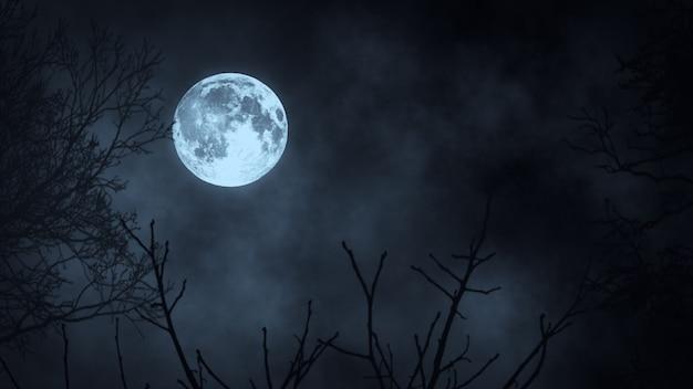 Темный ночной лес против полнолуния 3d иллюстрации Premium Фотографии