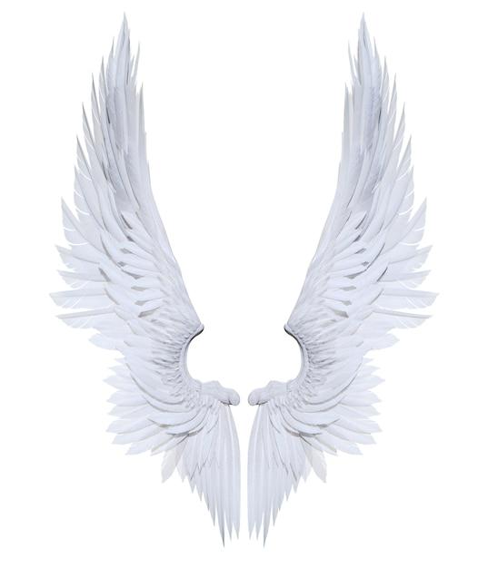3dイラスト天使の羽白い羽の羽毛は白い背景に 写真素材 プレミアム