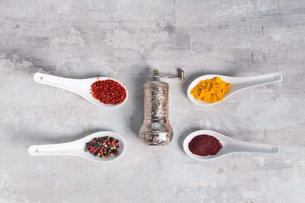 4 kinds of spices of different grinding in spoons with handle grinder on stone , flat lay Premium Photo