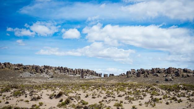 風光明媚な劇的な空と厳しい不毛の風景の中の高高度の流れるストリーム。ペルーアンデス高地の4000 mで上から広角ビュー。 Premium写真