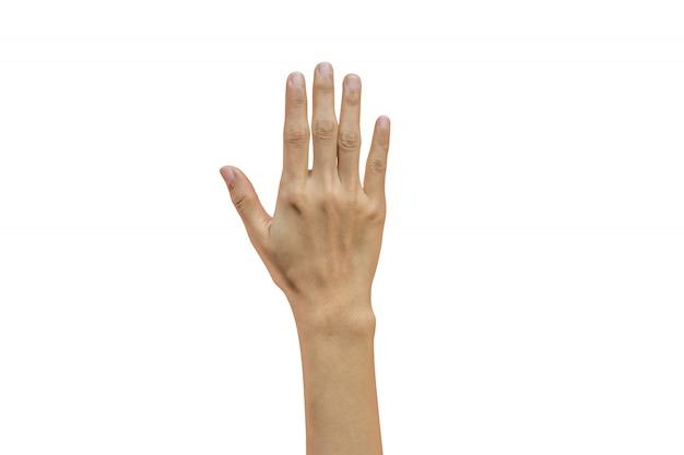 5本の指を示す女性の手 Premium写真