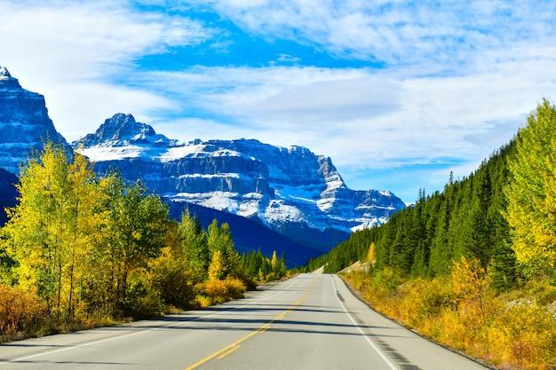 道路93、アルバータ州、カナダの高速道路 Premium写真