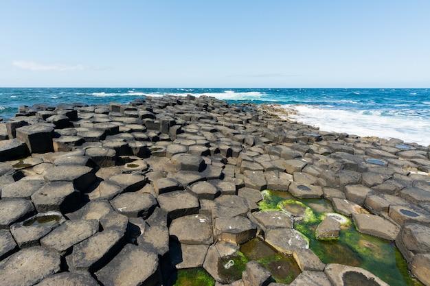 Ландшафты ирландии. дорога гигантов, северная ирландия Premium Фотографии