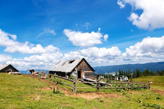 山の中の古い木造の納屋のある世帯 Premium写真