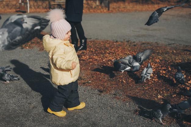 ハトを追いかける小さな子供。 Premium写真