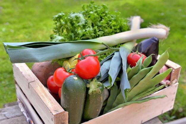 Свежие овощи в ящике поставить столик в саду Premium Фотографии