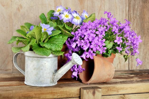 木製のテーブル上の鍋の花 Premium写真