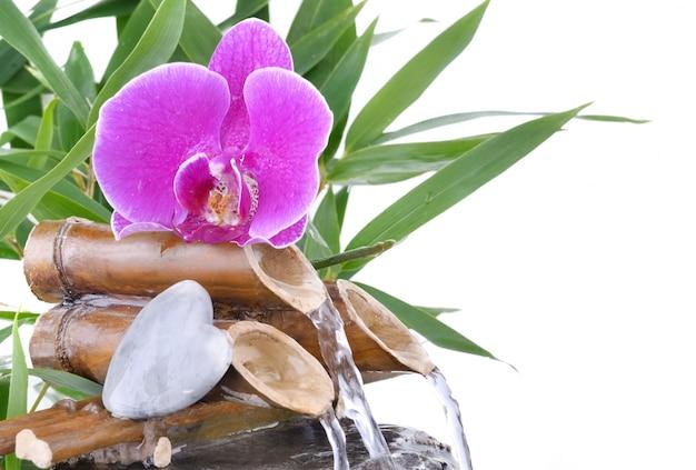 Орхидея и галька в форме сердца на фонтане Premium Фотографии