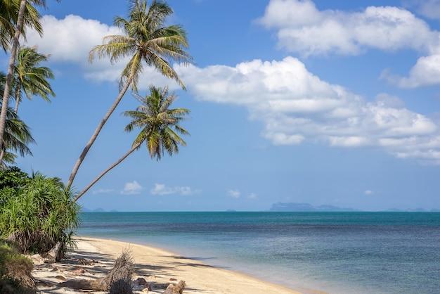 美しい野生の熱帯のビーチ、アイランドビュー、タイ Premium写真