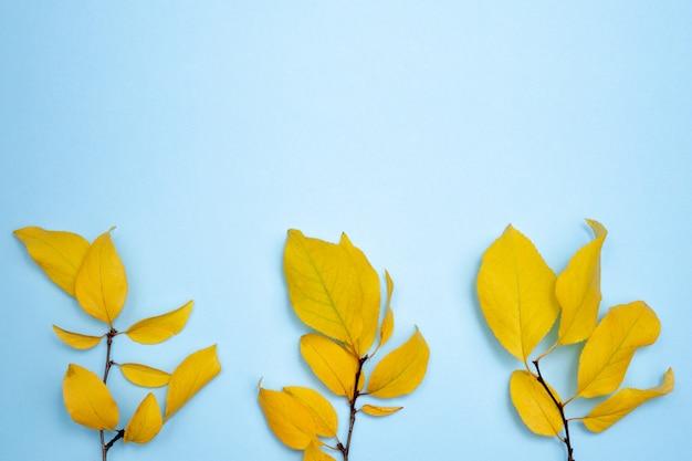 秋の組成、碑文の場所 Premium写真
