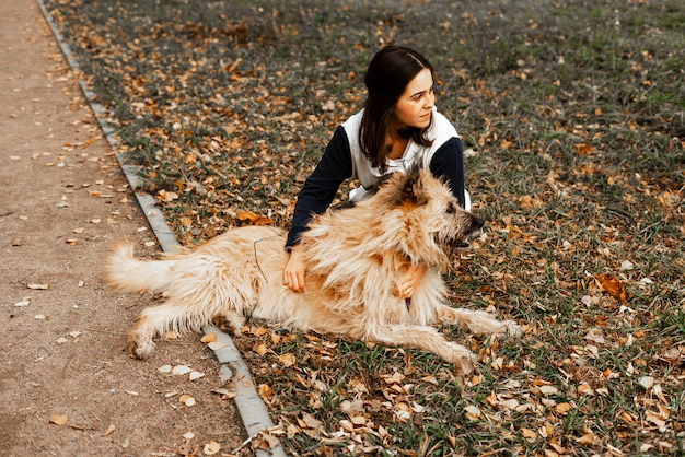 動物の訓練。ボランティアの少女が動物保護施設の犬と一緒に歩きます。秋の公園で犬と少女。犬と一緒に歩きます。動物の世話。 Premium写真