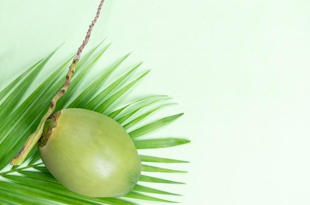 Кокос и зеленые листья пальмы на пастельных зеленом фоне. всемирный день кокоса или лето. Premium Фотографии