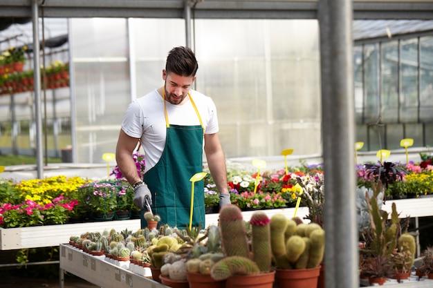 Люди, работающие в садовом магазине Premium Фотографии