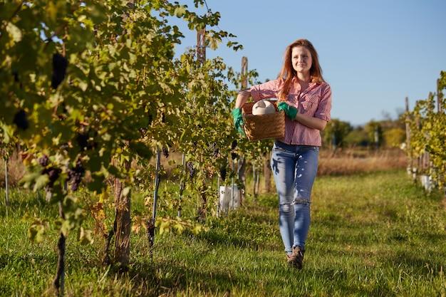 ブドウ園で働く女性 Premium写真