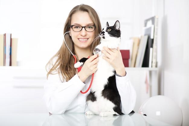 猫と獣医 Premium写真