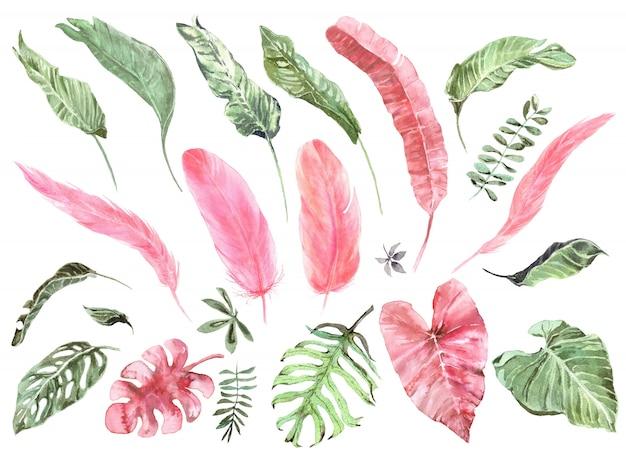 熱帯のエキゾチックな葉とピンクのフラミンゴの羽水彩セット Premium写真