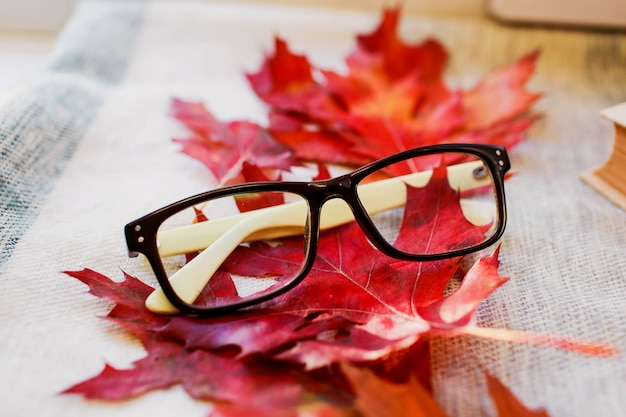 モダンなファッショナブルな眼鏡秋の明るい葉の背景 Premium写真