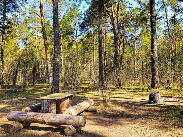 春の森の中の木のテーブル Premium写真
