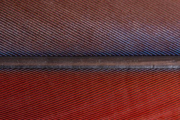 Поверхность пера Premium Фотографии