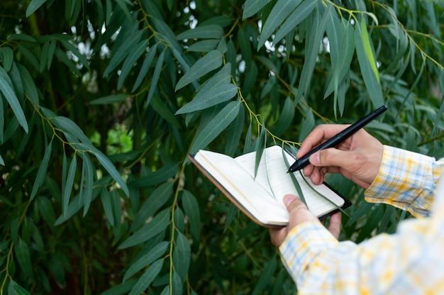 Фермер проверяет качество деревьев в саду Premium Фотографии