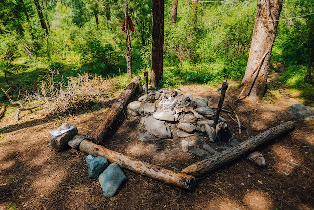 石、森、野生の森の丸太のベンチでき火でキャンプするための空きスペース。 Premium写真