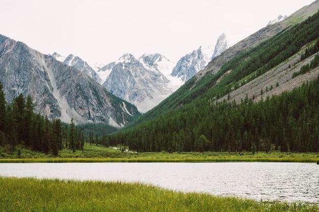 Прекрасные снежные горы за небольшим горным озером с блестящей водой среди богатой растительности. ручей вытекает из ледника. белый чистый снег на хребте. удивительный атмосферный ландшафт высокогорной природы. Premium Фотографии