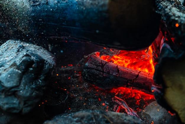 Тлеющие бревна горели в ярком огне. Premium Фотографии