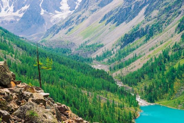針葉樹林と青い川の素晴らしい山 Premium写真