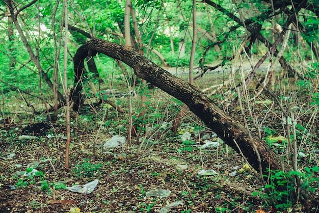 Куча мусора в лесу среди растений. токсичный пластик проникает в природу повсюду. Premium Фотографии