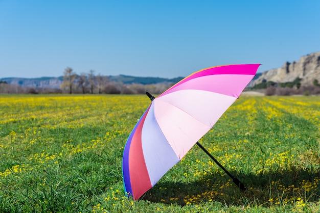 Красочный зонтик на траве в солнечный день. Premium Фотографии