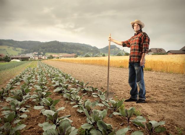 Фермер на поле Premium Фотографии
