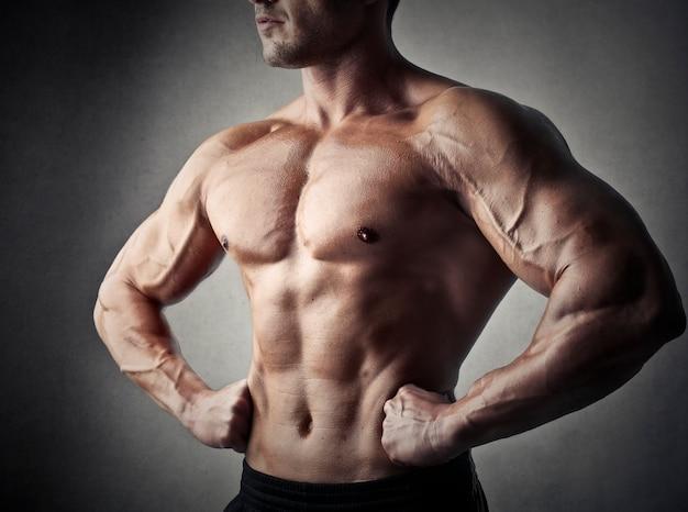 裸の胴体男 Premium写真