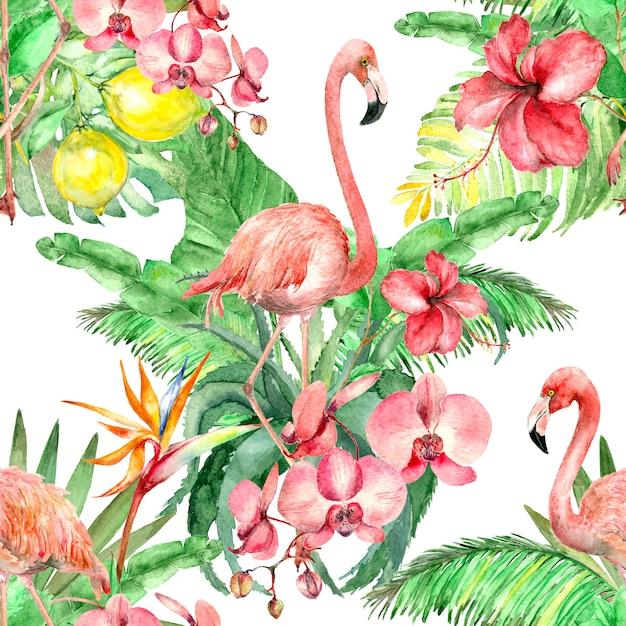 Тропический фламинго акварельный рисунок Premium Фотографии