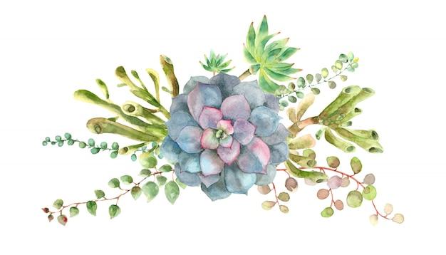 水彩多肉植物の花束 Premium写真