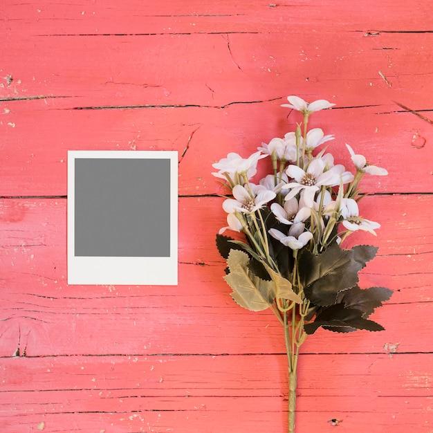 紫色の花のインスタント写真 無料写真