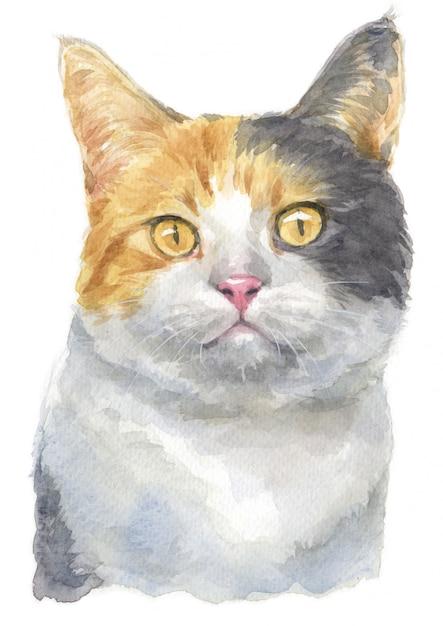 希薄三毛猫の水彩画 Premium写真