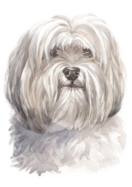 水彩画、白い犬 Premium写真