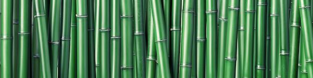 グリーン竹の背景 Premium写真