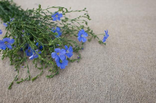 ブルーリネンの花束 Premium写真