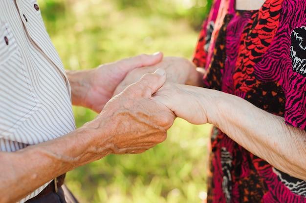 夏の公園で手を繋いでいる老夫婦。 Premium写真