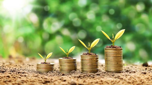 緑の背景をぼかした写真と金融のアイデアの上に積み重ねたコインの上に小さな植物を育てます。 Premium写真