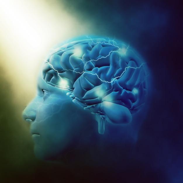 Мозг человека Бесплатные Фотографии