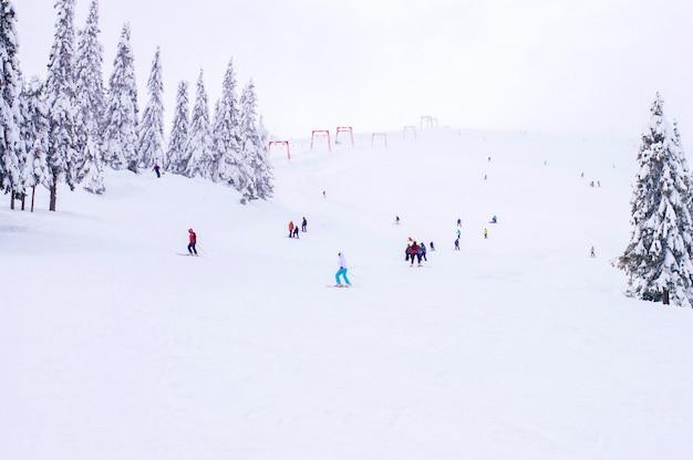 冬のスキー場 Premium写真